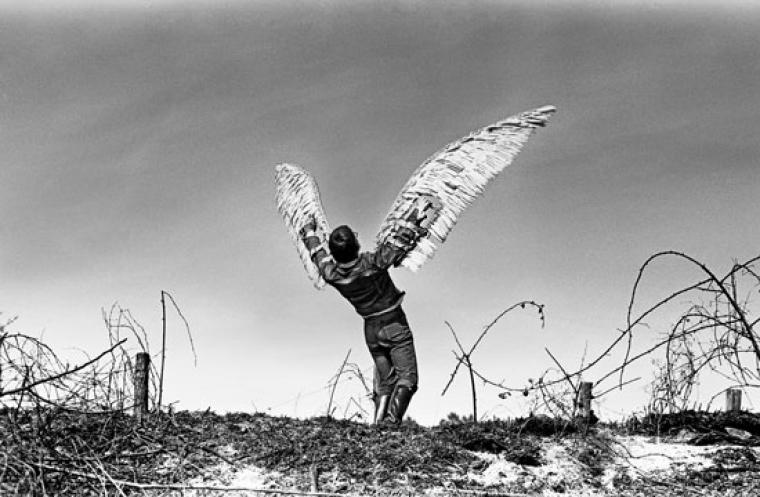 mario_terzic_my_wings_1970_c_peter_strobi_0
